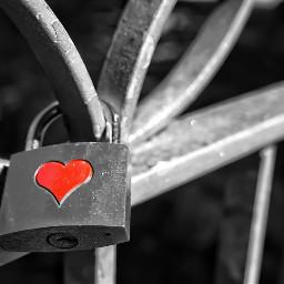 freetoedit desaturation love lovelock