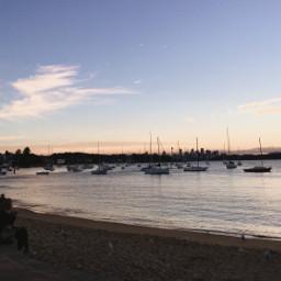 freetoedit sydney sydneyaustralia beach watsonbay