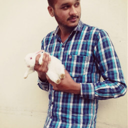 rabbit fun love blue freetoedit