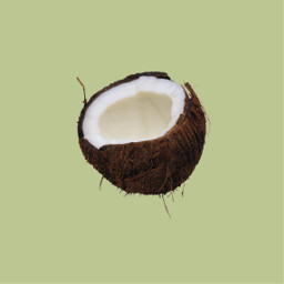 freetoedit myedit coconut