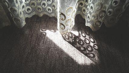 freetoedit sunlight