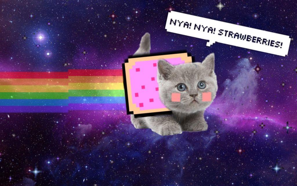 freetoedit nyancat nyan cat kitten cute space stars gal