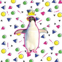 freetoedit pinguinday