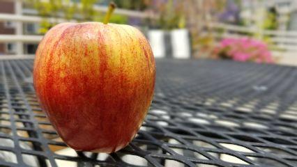 freetoedit apple