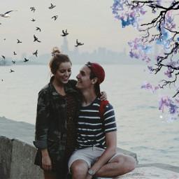 freetoedit dailyremixit love