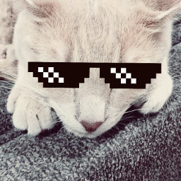 sunglassesstickerremix freetoedit