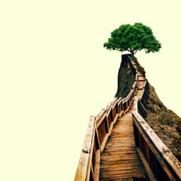 freetoedit tree surreal nowhere minimal