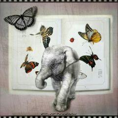 photocomposition edited elephant butterflies