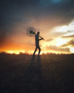 iphoneography madewithpicsart sunset sun dandelion