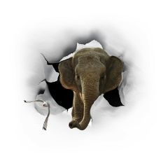 freetoedit edited elephant composition wild