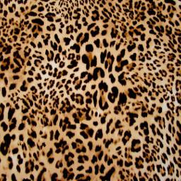 freetoedit paper background leopard leopardprint