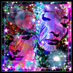 collage colorful vividity freetoedit