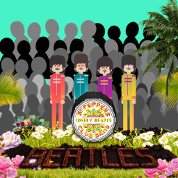 sgtpeppers lonelyheartsclub albumcover thebeatles minimal