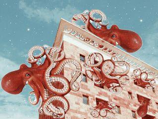 surreal octopus gentrification neighborhood neighbors