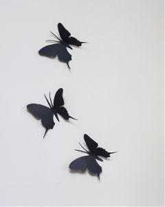 freetoedit butterfly black butterflies