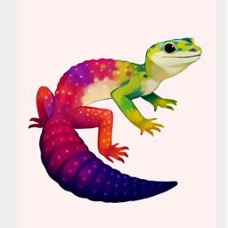 gecko reptiles aww animals rainbow